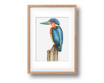 """Original watercolor painting """"King of the Fishers""""-handpainted-unique work of art-kingfisher-optional framed"""