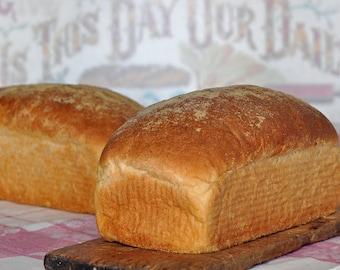 Honey Cornmeal Bread Recipe, Cornmeal Bread Recipe, Bread Recipes, Digital Cornbread Recipes, Printable Bread Recipes