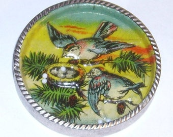 Dexterity Puzzle Bird's Nest German round glass topped puzzle