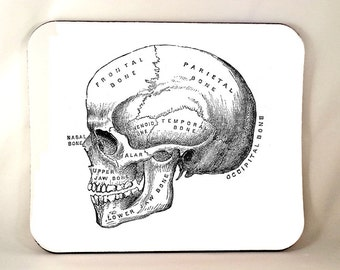 Anatomical Skull Mouse Pad, Horror Mouse Pad, Anatomy Vintage Medical Illustration, Sublimated, Sublimation, Thick 1/4 Inch
