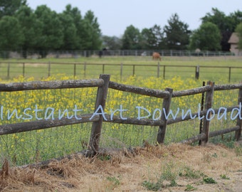 Country fence photography digital download background large backdrop,  fine art photography, stock photography, art