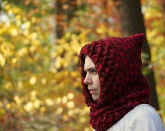 Dragon Scale Hood and Cowl