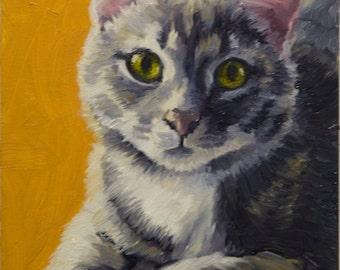 Gray Cat, 5x7 Original Oil Painting on Panel by Alice Leggett