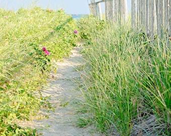 Cottage Decor, Seaside Art, Beach Fence, Blue Skies, Sandy Beach Path, Coastal Home Decor, Large Wall Art, Nantucket Pictures, Home Wall Art