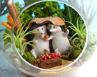 "Hedgehog Terrarium Kit ~ 7"" Air Plant Terrarium Kit ~ Sharing Hedgehogs ~ Faux Succulent ~ Live Air Plants ~ Friendship ~ Birthday ~ Gift"