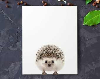 Hedgehog print, Woodland animals, PRINTABLE art, Nursery decor, Animal art, Baby animals, Nursery wall art, Kids art, Baby boy nursery art