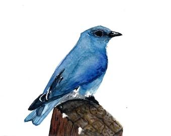 Watercolor Mountain Bluebird Print 5 x 7