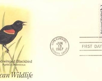 Red-Winged Blackbird  (F9)