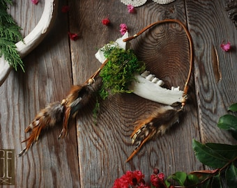 deer jawbone wall hanging with feathers and preserved moss