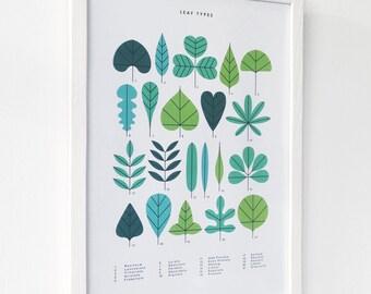 A3 Leaf Types print