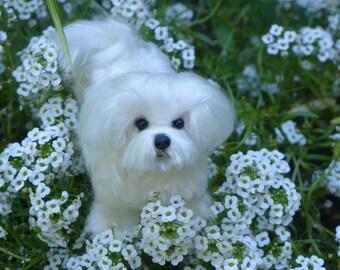 Custom Pet Portrait / Felted Miniature Sculpture of your Dog