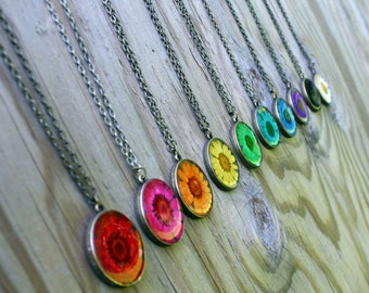 Pick Your Color! Rainbow Daisy Necklace, Real Flower Necklace, Chrysanthemum, Botanical Jewelry, Pressed Flower Jewelry, Antique Bronze