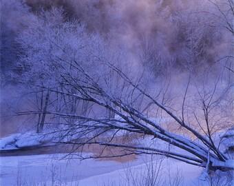 Winter fog along la rivière du Diable at Saint-Jovite, Laurentides