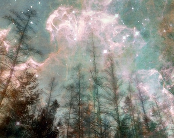 Digital Download Photographic Art Collage...Forest of Dreams..printable wall art...celestial..night sky.. trees..north woods..aqua..stars