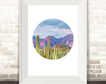 Cactus Print, Cactus Photography Print, Arizona Desert, Cactus Wall Art, Cactus Art Print