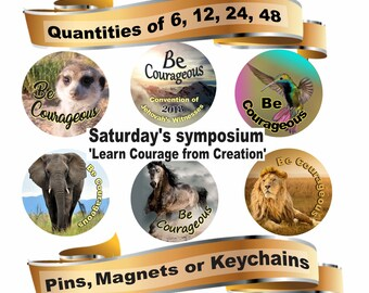 JW gifts/2018 'Be Courageous - Learn courage from creation symposium/pins, magnets, keychains/JW.org/jw convention gifts/w stuff/jw pins