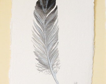 Feather original watercolour illustration painting one of a series