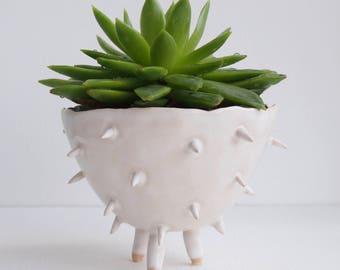 Handmade white ceramic spiky cactus planter, ceramic cactus planter, white plant pot, succulent planter, flower pot, white pottery planter