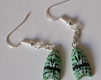 Moth and butterfly earrings