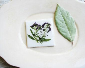 Pressed Flowers Magnet, Pressed Flowers Floral Art Magnet, Canvas Art, Tiny Art, Magnet Art