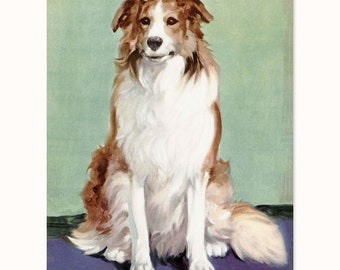 "Dog Art, Collie Print (1930s Wall Decor, Country Cottage Art, Animal Portrait Illustration) Farm Animals Nursery  --- ""Loyal Collie"""