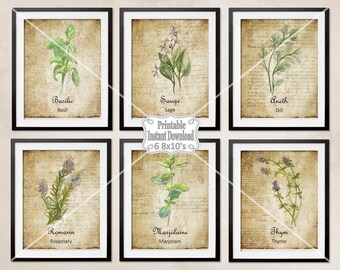 Printable French Country Herbs Watercolor Botanicals Antique French Backgrounds Kitchen Dining Room ~ DIY Instant Download ~ 6 8x10 Prints