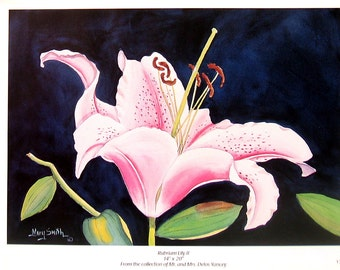 Flower Print - Rubrium Lily - Botanical Print -1996 Naturalist Book Page - 12 x 9