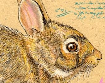 Easter Rabbit Bunny  Handmade Greeting Card