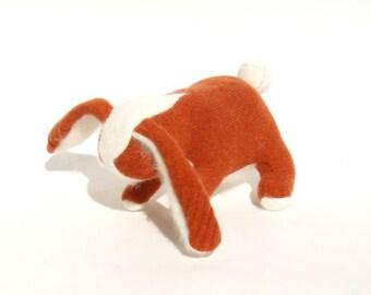An Orange and White Angora Rabbit