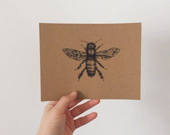 Insect & Flower Postcard Set