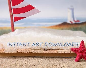 Sailboat Backdrop Background Digital Downloads Instant Art Baby Photography Newborn Summer Art Ocean Sea Beach Sail Boat Red Starfish
