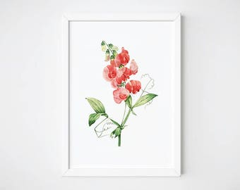 Botanical Print, Watercolor Print, Printable Art, Botanical Art, Flower Print,  Wall Art Decor, Living Room Poster |Gesse  à Larges feuilles