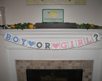 BOY OR GIRL? Banner - Gender Reveal Party - Baby Decoration - Shower Decoration - Photo Prop