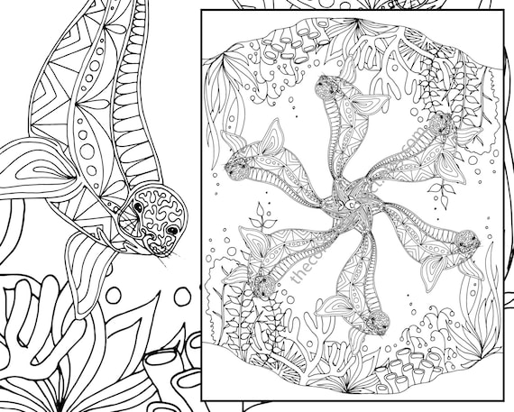 adult coloring page adult coloring sheet seal colouring