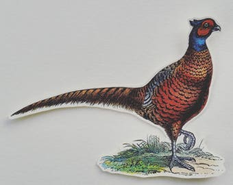 6 x Pheasant stickers. Snail mail hobonichi midori planner journal decorations. Ephemera.