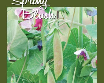 Spring Blush Snap Pea Seed 50 ct Packet
