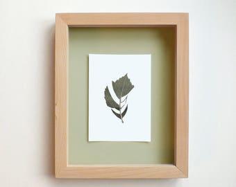 Cut-Leaf Monoprints (5)
