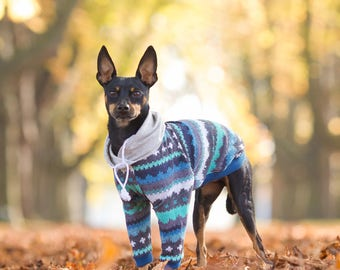 Sweatshirt dog clothes, Dog clothes, Blue and grey hoodie, Custom dog clothes, dog sweater, hundemantel, Dog jacket, Dog coat, All breeds