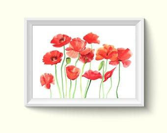 Poppy Flower Watercolor Painting Poster Art Print P354