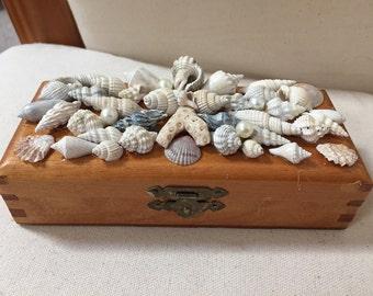 7 Inch shell art jewelry box beach art wood box