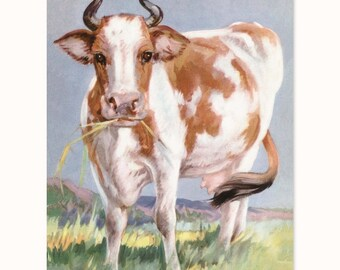 "Cow Art, Guernsey Print (Vintage Style Farmhouse, 1930s Wall Decor, Boys Room Nursery Girls Decor) Farm Animals Print --- ""Queen Bess"""