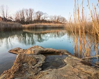 Lake Lefferts Marsh V1