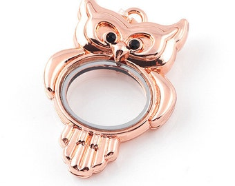 Rose Gold Owl floating locket, Glass Floating Locket, Living Memory Locket, Gold Locket 2 Sided With 4 Black Rhinestones