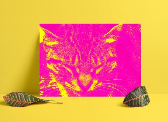 muschi katze gesicht super helle psychedelischen ein und die. Black Bedroom Furniture Sets. Home Design Ideas