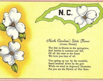 North Carolina, State Flower - Postcard - Vintage Postcard - Unused (NN)