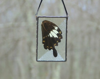 Real butterfly wing ornament stained glass suncatcher, preserved butterfly wing glassart, nature insect art, butterfly ornament