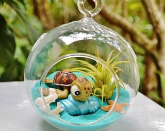 Finding Nemo Terrarium Kit ~ Disney Nemo Characters ~ Small Air Plant Terrarium Kit ~ Coastal Living Beach Decor ~ Finding Dory ~ Gift Idea