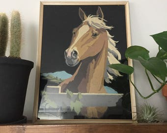 Horse Head Paint By Number Velvet Painting