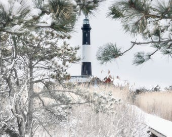 Winter at Fire Island Lighthouse: Framed by Pine Trees