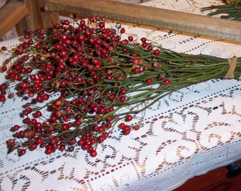 2 Bunches of Wild Rosehips   Home Decor Primitive Decoration  Crafts